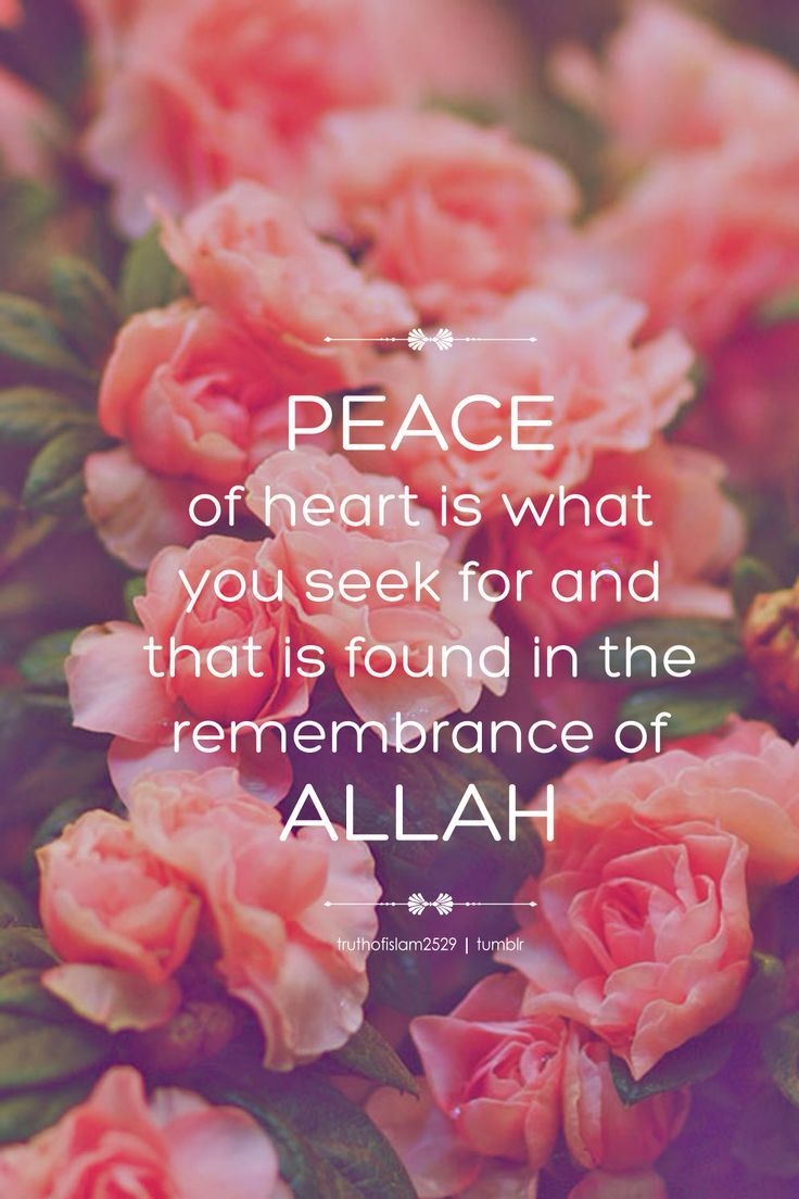 #Islam #Allah Peace of heart is what you seek for, and that is found in the remembrance of Allah http://greatislamicquotes.com/ramadan-quotes-greetings-wishes/