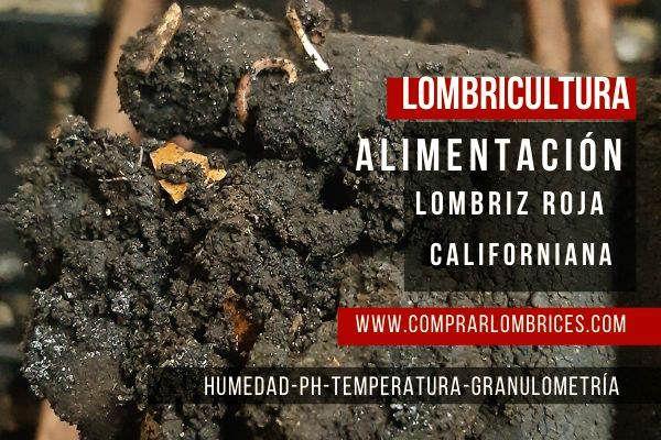 Comprar Lombrices Rojas Californianas Eisenia Foetida Lombriz Californiana Alimentación Lombrices Californianas Lombriz Alimentacion