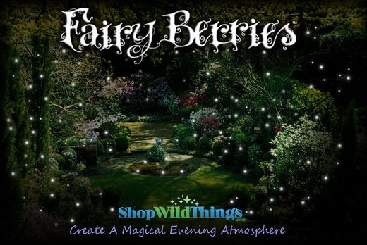 """Fairy Berries"" - they look like fireflies apparently? Check out the video: http://www.shopwildthings.com/fairyberryfairyberries.html"