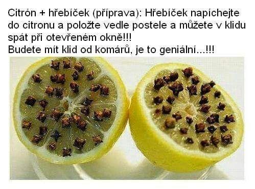 Citron proti komarom