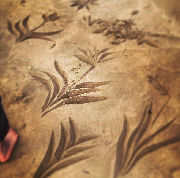 INSTAGRAM 18 Aug. Vanessa van Vreden Photography. Beach calligraphy with foot. Site_Specific #LandArtBiennale in #Plett. #LandArt
