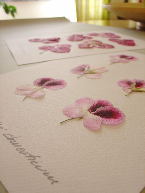 Arte e Manha: Emoldurar Flores Secas                                                                                                                                                                                 Mais