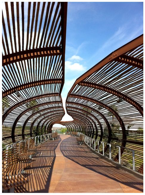 Tunnel … basket … giant snake skeleton … the covered walkway at the Dos Lago's center in Corona, evokes all of those things. Huge curved ribs of rust-colored steel create a …