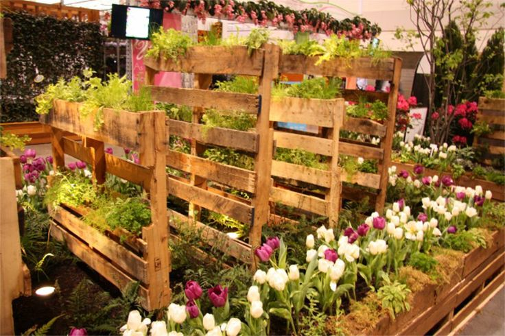 Vertical reclaimed wooden pallets - provides growing space for all the salad greens.