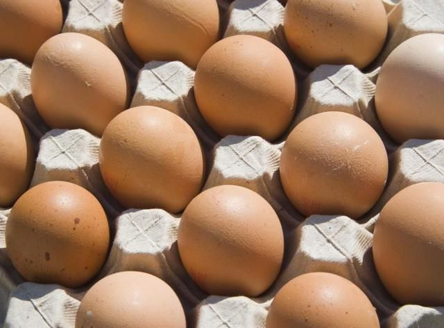 What Are the Benefits of Egg-White Protein Powder?