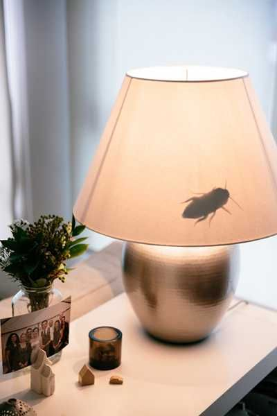 scary halloween diy decorations | paper crafts and halloween decorating ideas. Clever lampshade idea