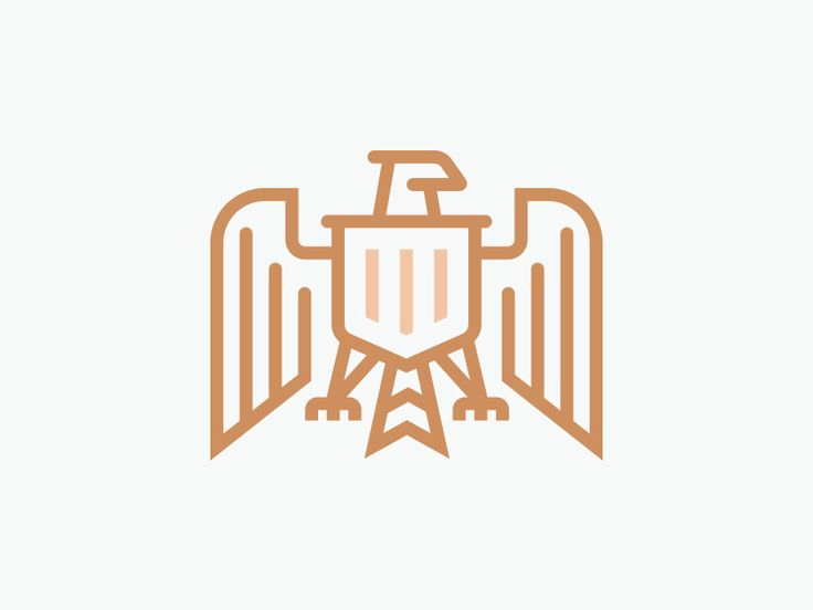 Unused Bald Eagle Logo Design