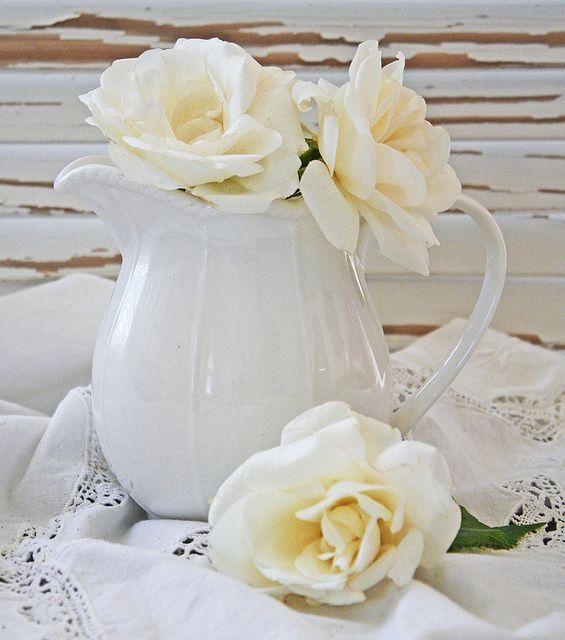 Roses in a vase... white in white...