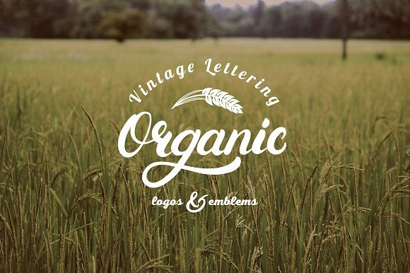 Organic Logo Set by Letters-Shmetters on @creativemarket