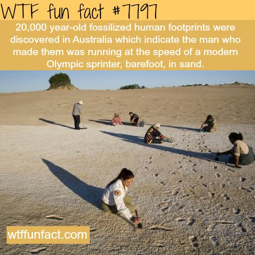 Amazing 20,000 year old footprints found in Australia - WTF fun facts