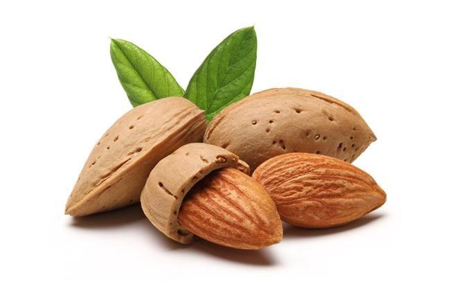 8)BADEM  Badem ve diğer yağlı tohumlar içerdikleri protein sayesinde, metabolizma hızını artırma etkisi  olan kasların yapımına yardım eder.