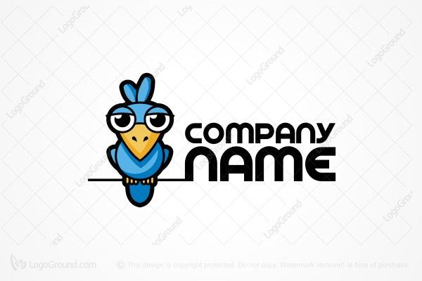 Logo for sale: Parrot Cartoon Logo