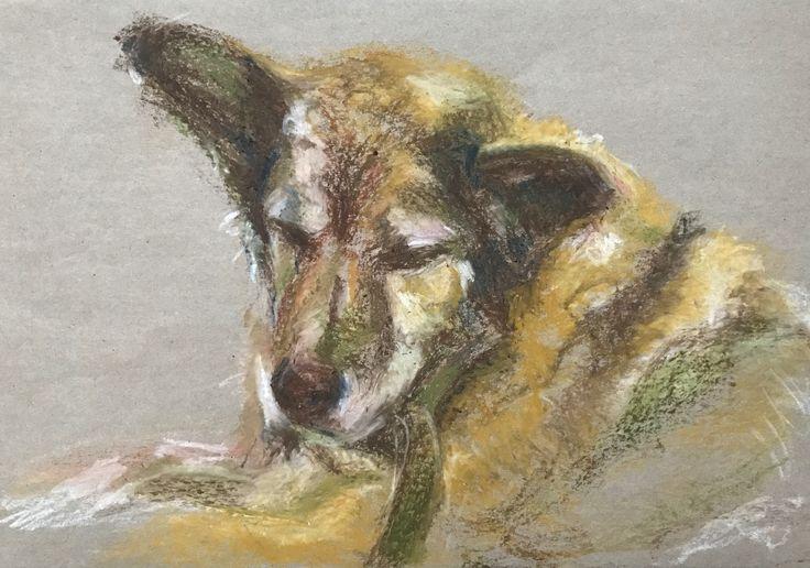 Canela. Stray dog - Oil pastel drawing. A3 size - dog portrait