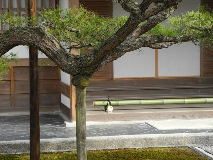Sunday, before leaving Kyoto, I visited Ginkakuji, the temple of the Silver Pavilion. Unlike the Temple of the Golden Pavilion,..