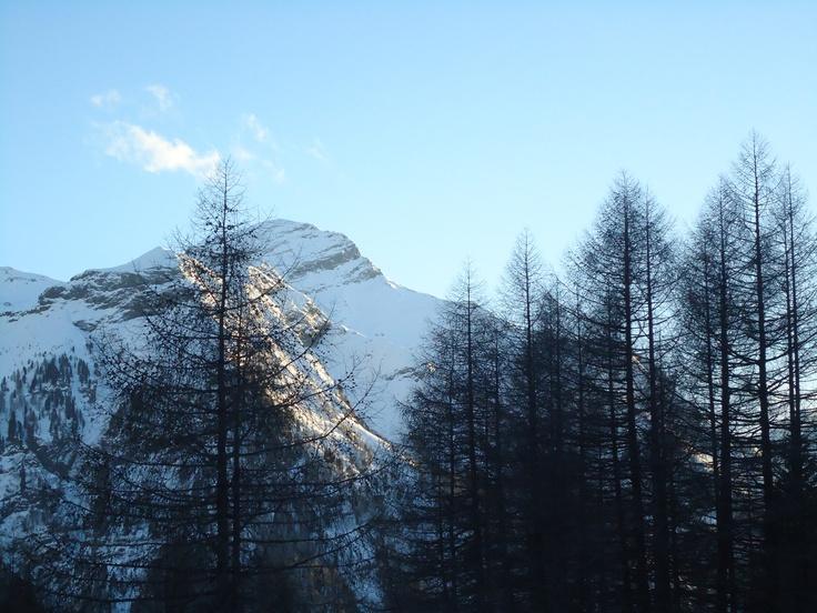 herrlicher Blick von der Innerhofer alm in Weißenbach aus
