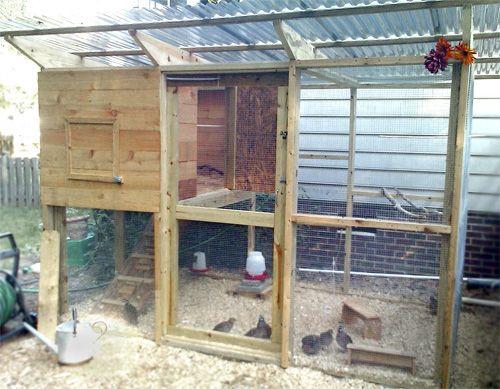 6c40be30092777773cf0864ea87e3257--backyard-coop-backyard-poultry Bird House Plans Home Built on home built greenhouse plans, home modern modular prefab house, home built shed plans,