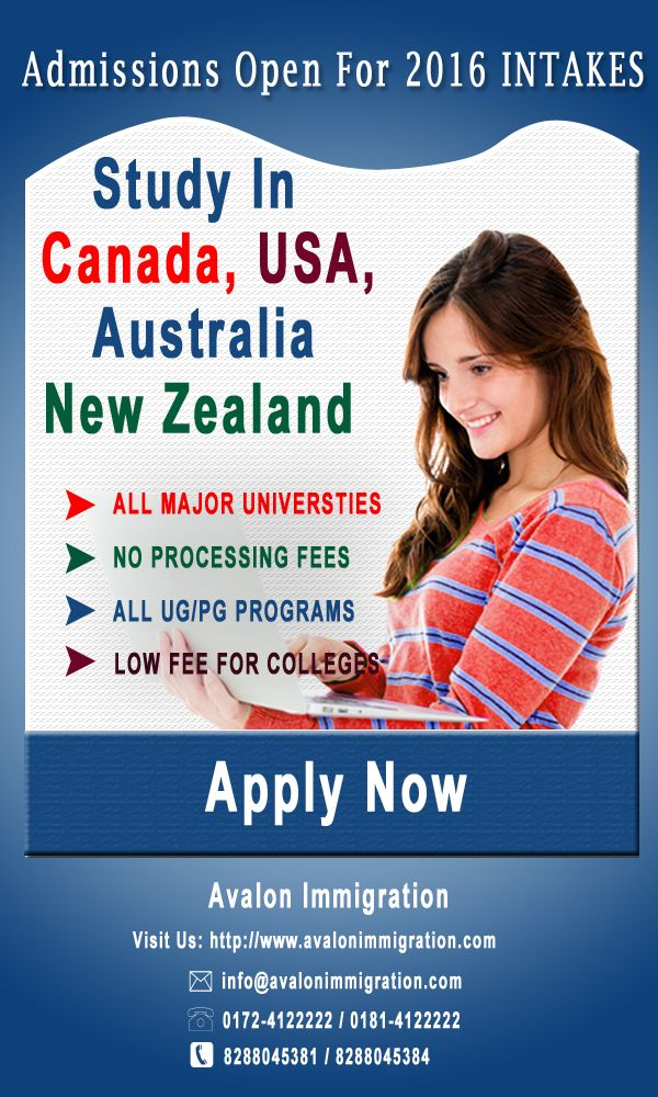 Want to go for study in Canada, USA, Australia and New Zealand? Visit Avalon Immigration Chandigarh. Best study abroad consultants in chandigarh, jalandhar and Punjab