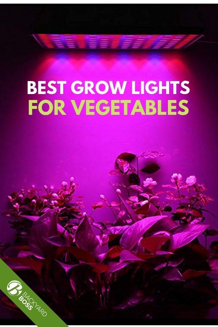 Best Grow Lights For Vegetables Best Grow Lights Grow 640 x 480