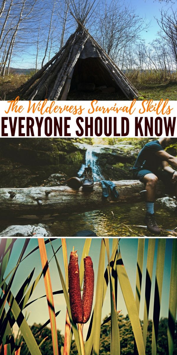 The Wilderness Survival Skills Everyone Should Know No matter how much prepping and stockpiling we do, basic wilderness survival skills can be the determining factor of whether we make it through a SHTF situation