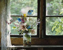 lovely flowers on windowsill.