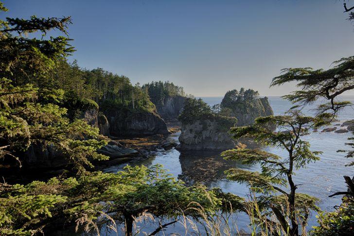 Olympic Peninsula... Cape Flattery, Hoh Rainforest, etc...