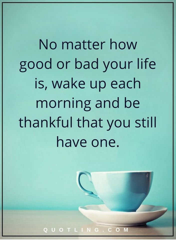 Each Morning We Are Born Again What We Do Today Is What: 54 Best Thankful Quotes Images On Pinterest