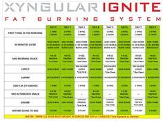 Image result for xyngular 8 day challenge