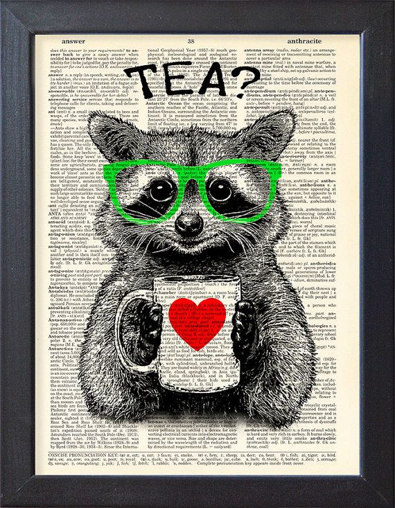 Raccoon print tea time DICTIONARY Print art poster by Natalprint