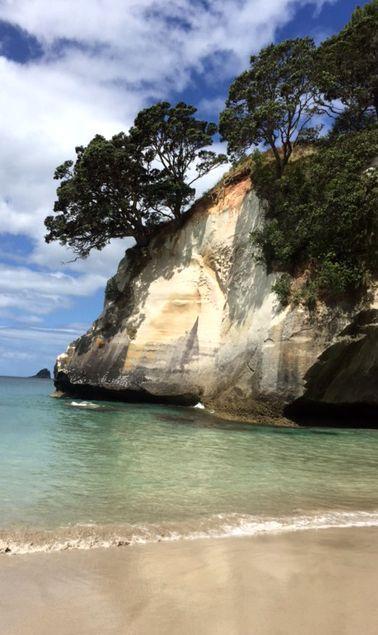 Hahei - Kajak fahren, Strandspaziergang u.v.m. - Reisen in Neuseeland