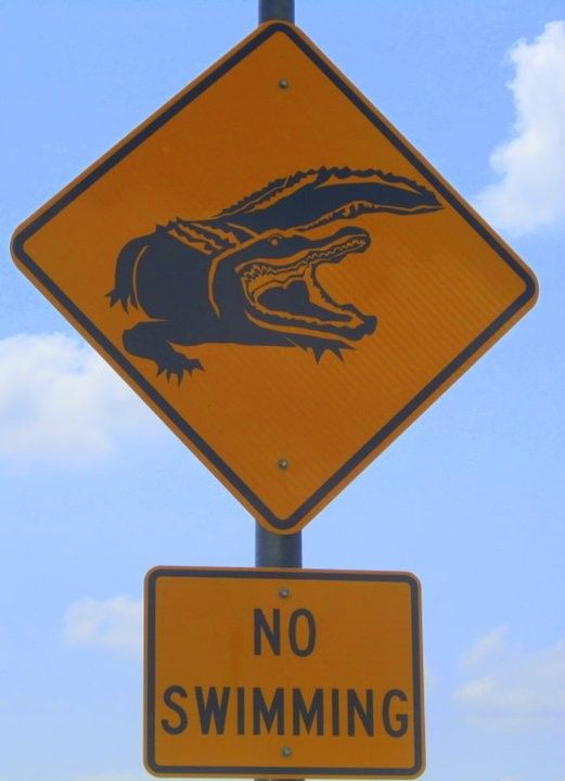 Really because seeing an Aligator sign the first thought I have is to go swimming lol!