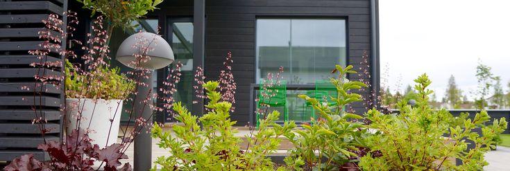 Outdoor living area. Scandinavian. Nordic garden design, designed by Green Idea