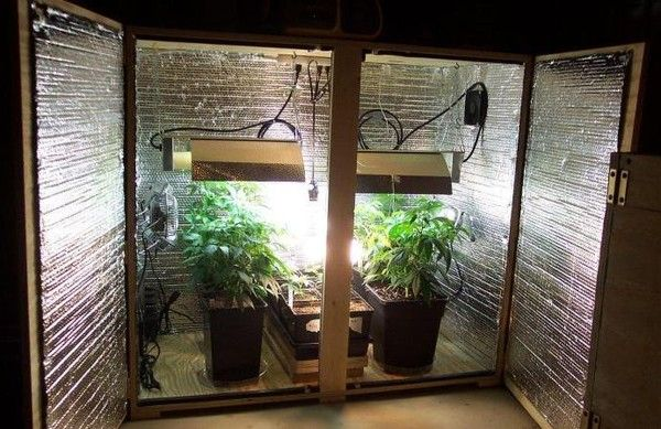 Diy How To Build A Stealth Speaker Grow Box Weed