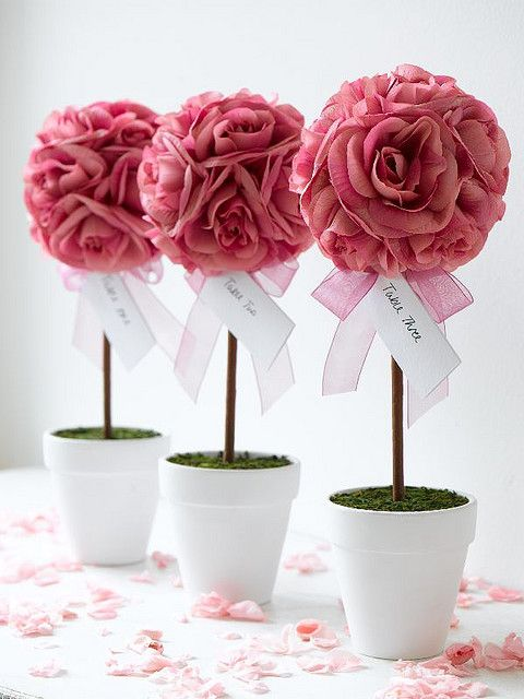 topiary trees--nice for bridal shower, wedding, or baby shower!