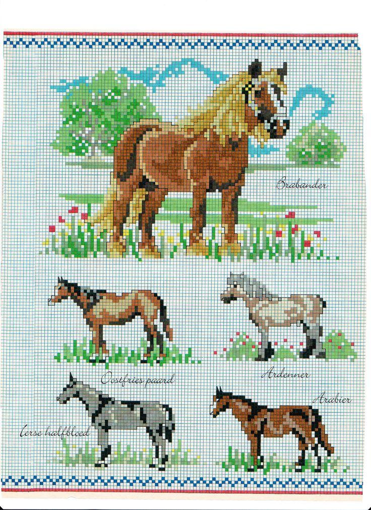 Boerderij Dieren Poster