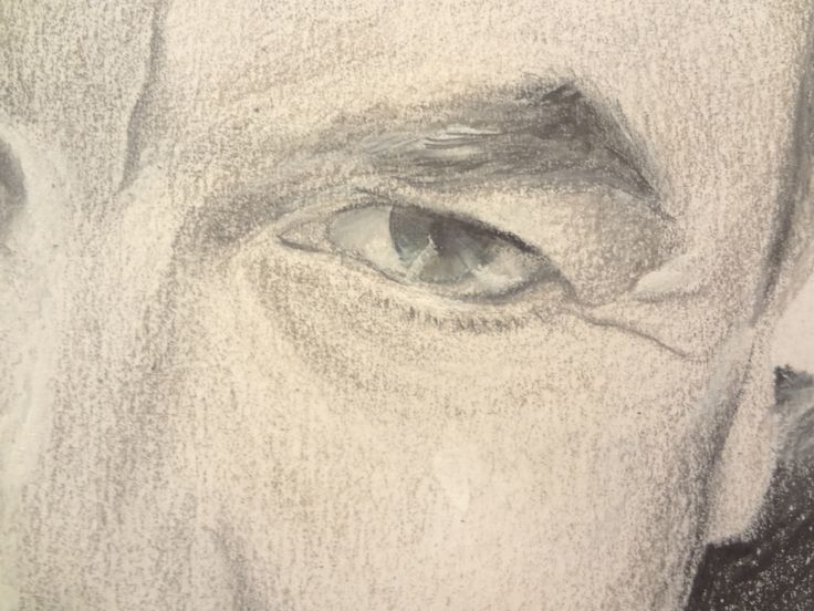 Portrait drawing of famous eyebrows