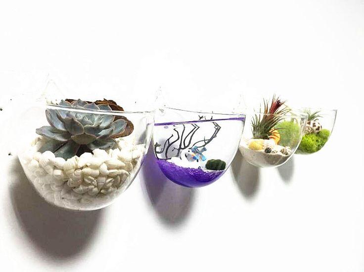 Set of 4 empty glass wall bowl vase//wall mini fish bowl // indoor wall planters//air plants wall terrarium//wall art decor by NewDreamWorld on Etsy https://www.etsy.com/listing/253985731/set-of-4-empty-glass-wall-bowl-vasewall