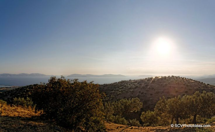 Sun, Sea and Olives... A small album and panorama witnessing the strong contrast of the Greek scenery.