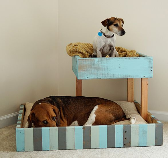 Ruggy Diy Dog Bed: 25+ Beste Ideeën Over Hondenmand Pallets Op Pinterest