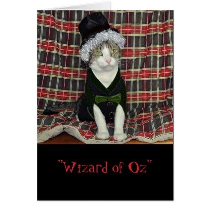 Black and white tabby cat dressed as the Wizard Card - black and white gifts unique special b&w style