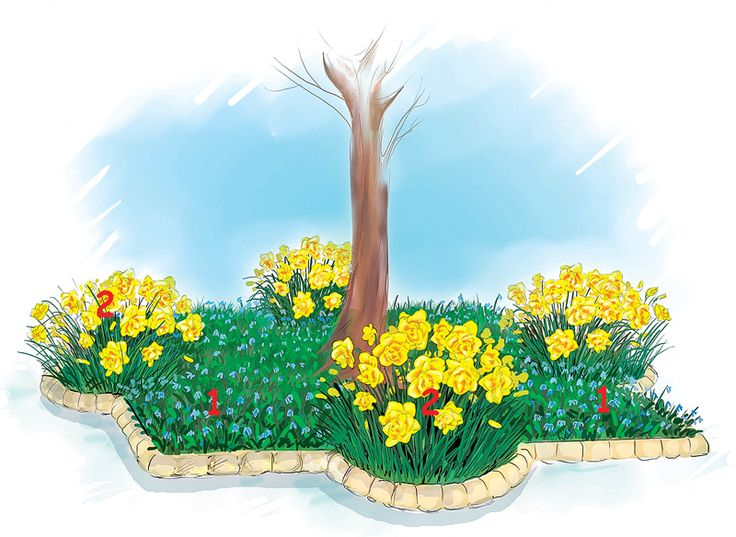 Создаем цветник под деревом. Обсуждение на LiveInternet - Российский Сервис Онлайн-Дневников