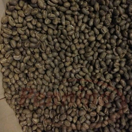 jamaica blue mountain green coffee beans