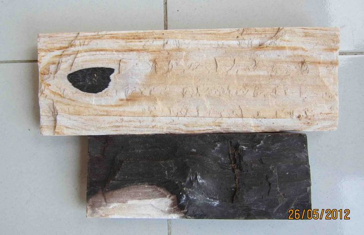 FOSSIL WOOD WALL TILES MADE FROM GENUINE PETRIFIED WOOD.