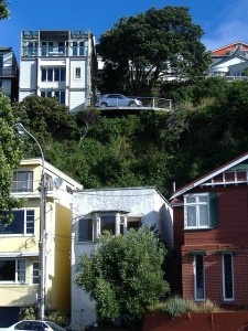 Terraces in Wellington New Zealand (photo by H Cuthill)