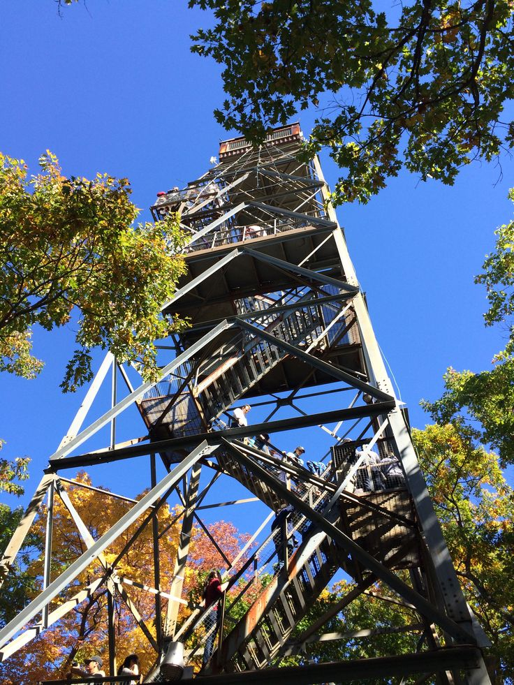 Climb the 30 meter high lookout tower for breath taking #fallcolor views of Dorset and its surrounding.