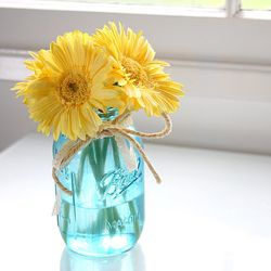 A great color combination of yellow & blue. Gerbera Daisies and a blue mason jar go beautifully together. Gerbera Daisies are available year-round in a wide variety of different colors and are an excellent and affordable option for brides looking for DIY wedding flowers.