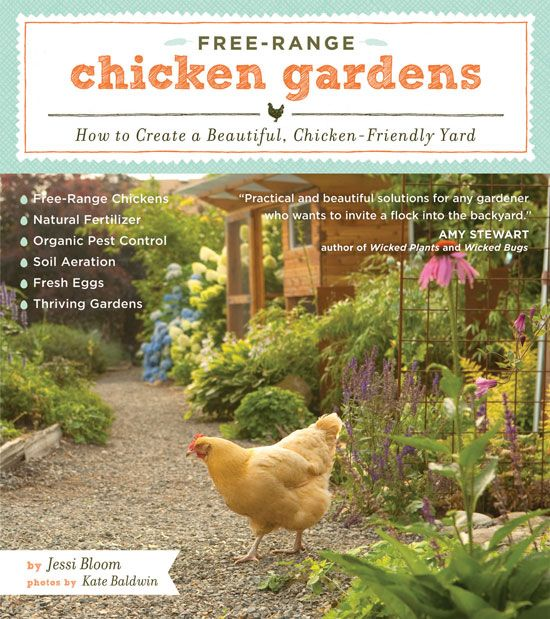 """In """"Free-Range Chicken Gardens,""""  garden designer Jessi Bloom covers everything a gardener needs to know, including chicken-keeping basics, simple garden plans to get you started, tips on attractive fencing options, the best plants and plants to avoid, and step-by-step instructions for getting your chicken garden up and running. Read an excerpt from this book on how to design a custom chicken coop."""