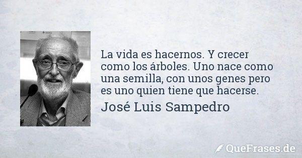 Jose Luis Sampedro. La vida es hacernos. Y crecer como los árboles. Uno nace como una semilla, con unos genes pero es uno quien tiene que hacerse.
