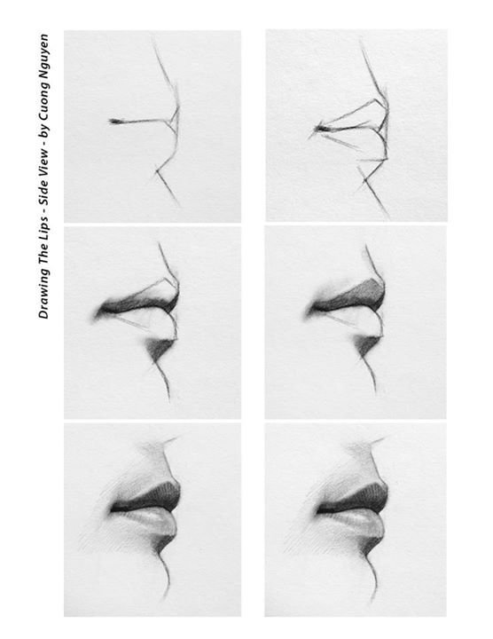 Drawing the lips - Side view step by step by Cuong Nguyen…