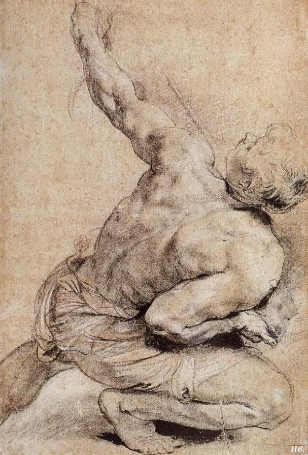 Study of a man's back. Peter Paul Rubens. Flemish. 1577-1640.