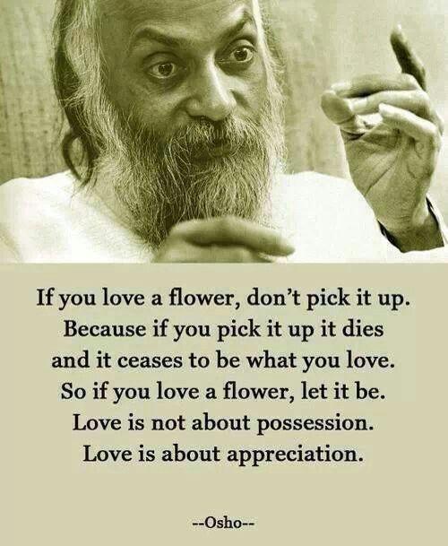Love isn't possession